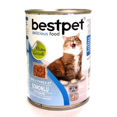 Best Pet - Bestpet Somonlu Konserve Kedi Maması 400 gr