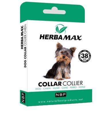 Herba Max - Herba Max Köpek Pire ve Dış Parazit Kene Tasması 38 Cm